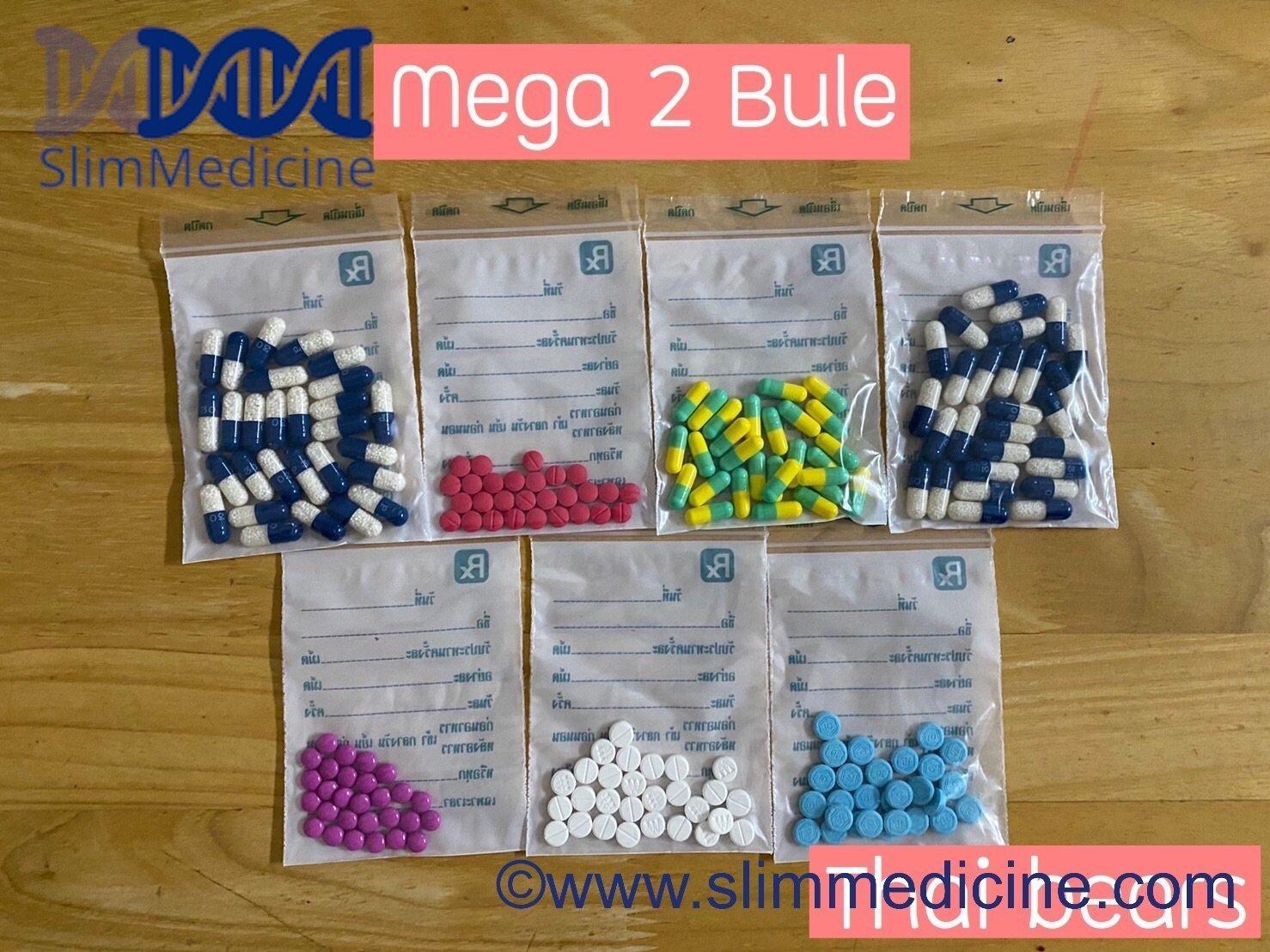 Mega 2 blue